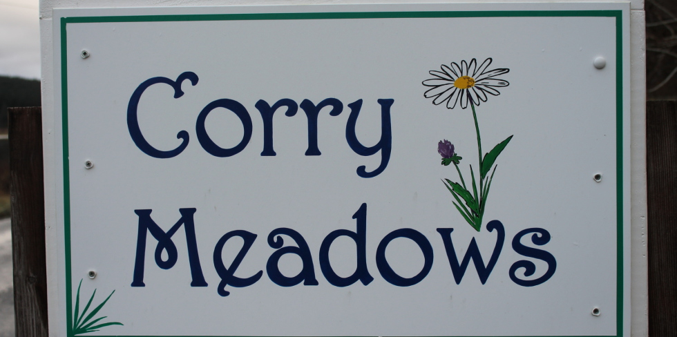 Corry Meadows